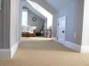loop-carpet